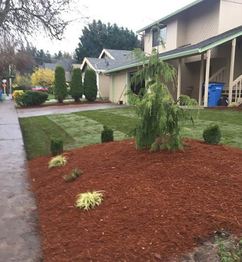 landscaping-mulch