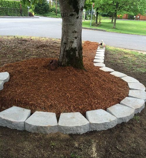 landscaping-vancouver-project-8