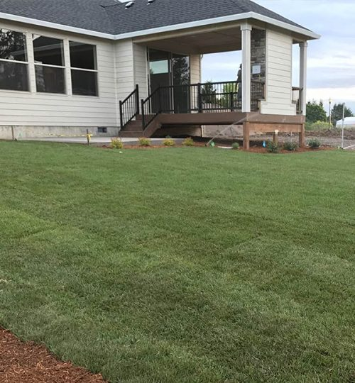 lawn-installation-project